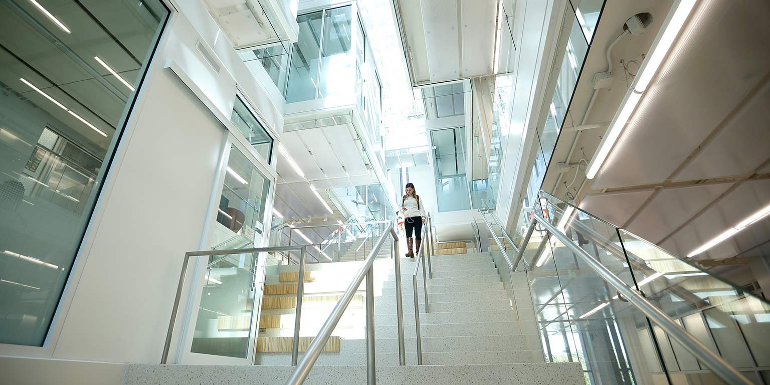 A female student walks down the glass staircase in Luddy Hall, which is located in center of the building.